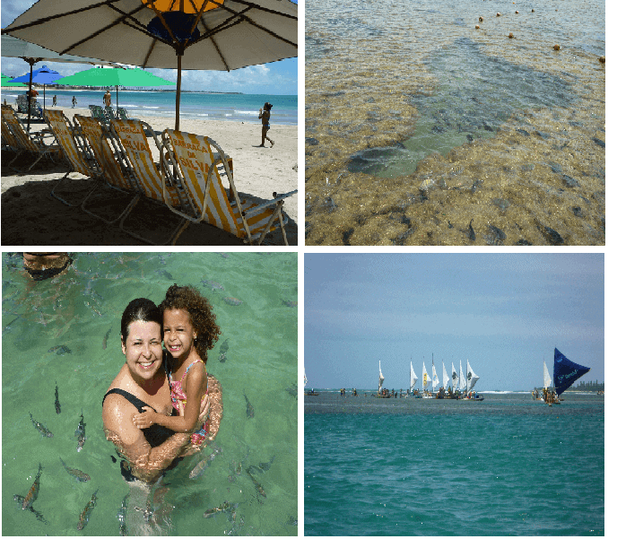 collage with 4 images showing a beach in Pernambuco, Brazil