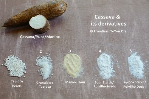 cassava root and its derivatives