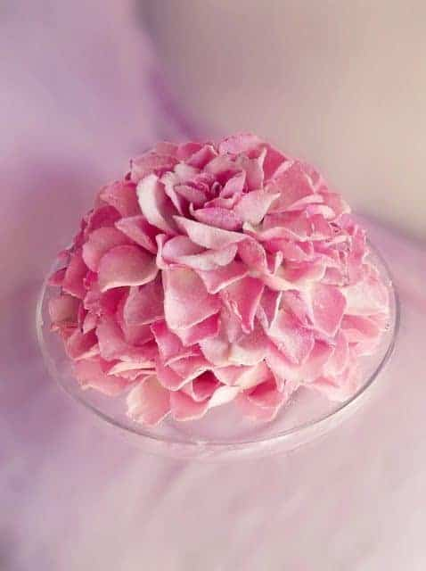 Giant Sugared Rose Petal Cake by Lick That Spoon