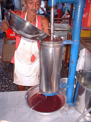 Machine that separates acai­ pulp from its pit. Image Author Decio Horita Yokota. Public domain.