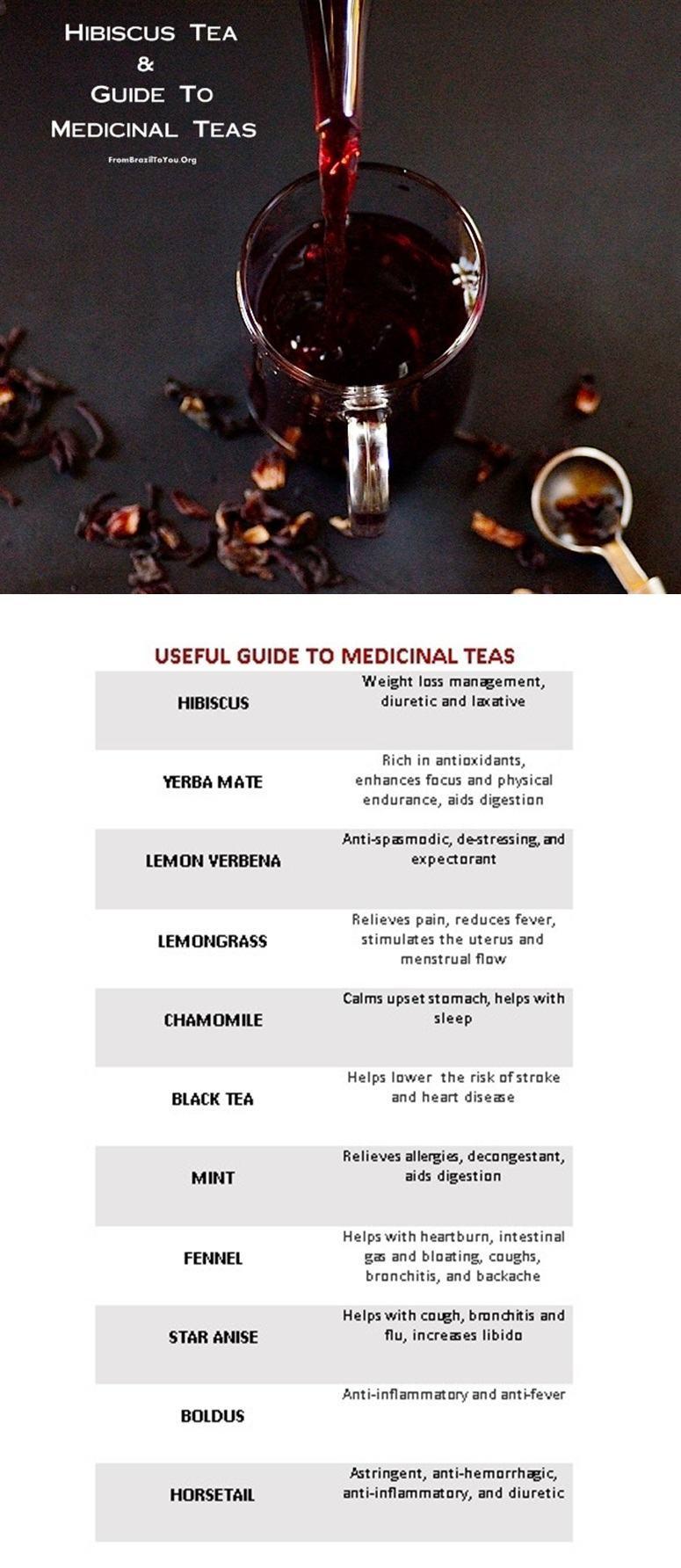 hibiscus-tea, guide-medicinal-teas