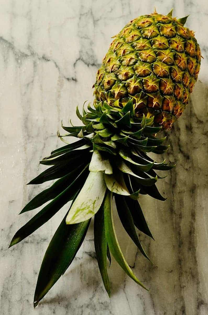Pineapple by Denise Browning