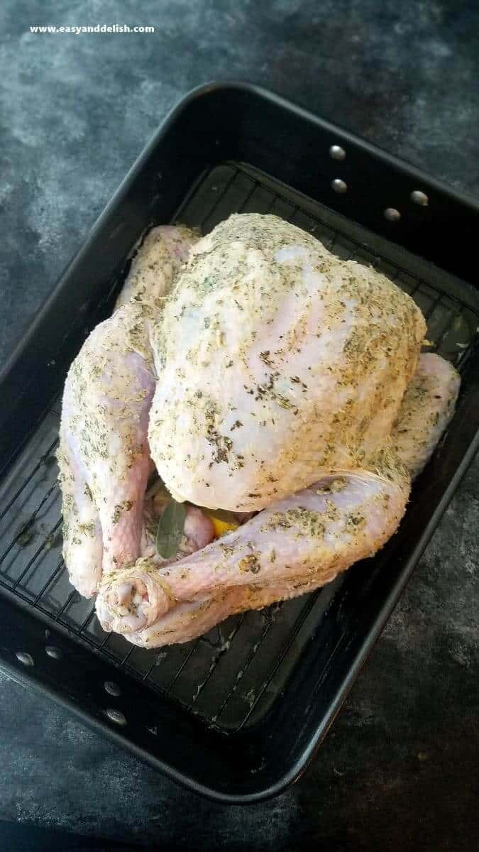 preparing whole turkey to roast in a pan