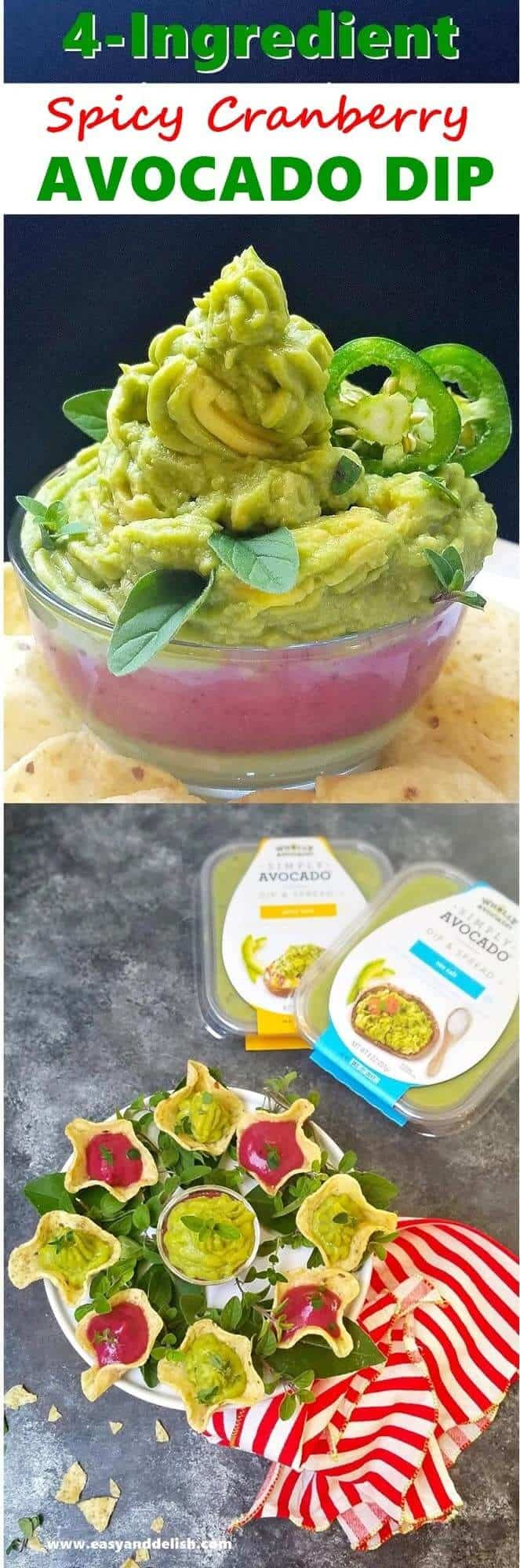 collage with cranberry avocado dip