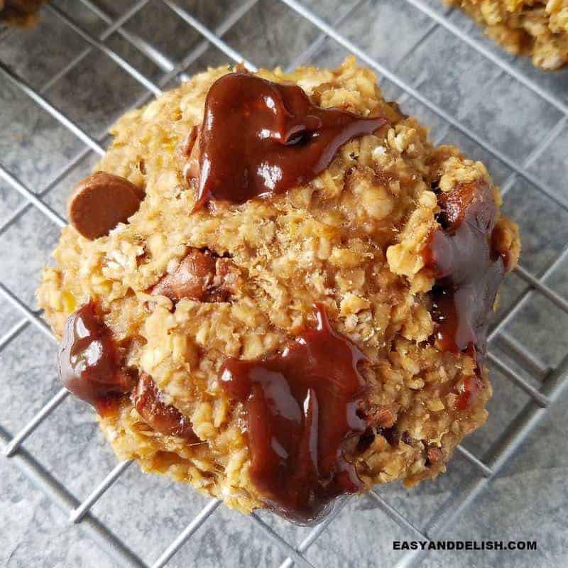 one oatmeal cookie closeup image