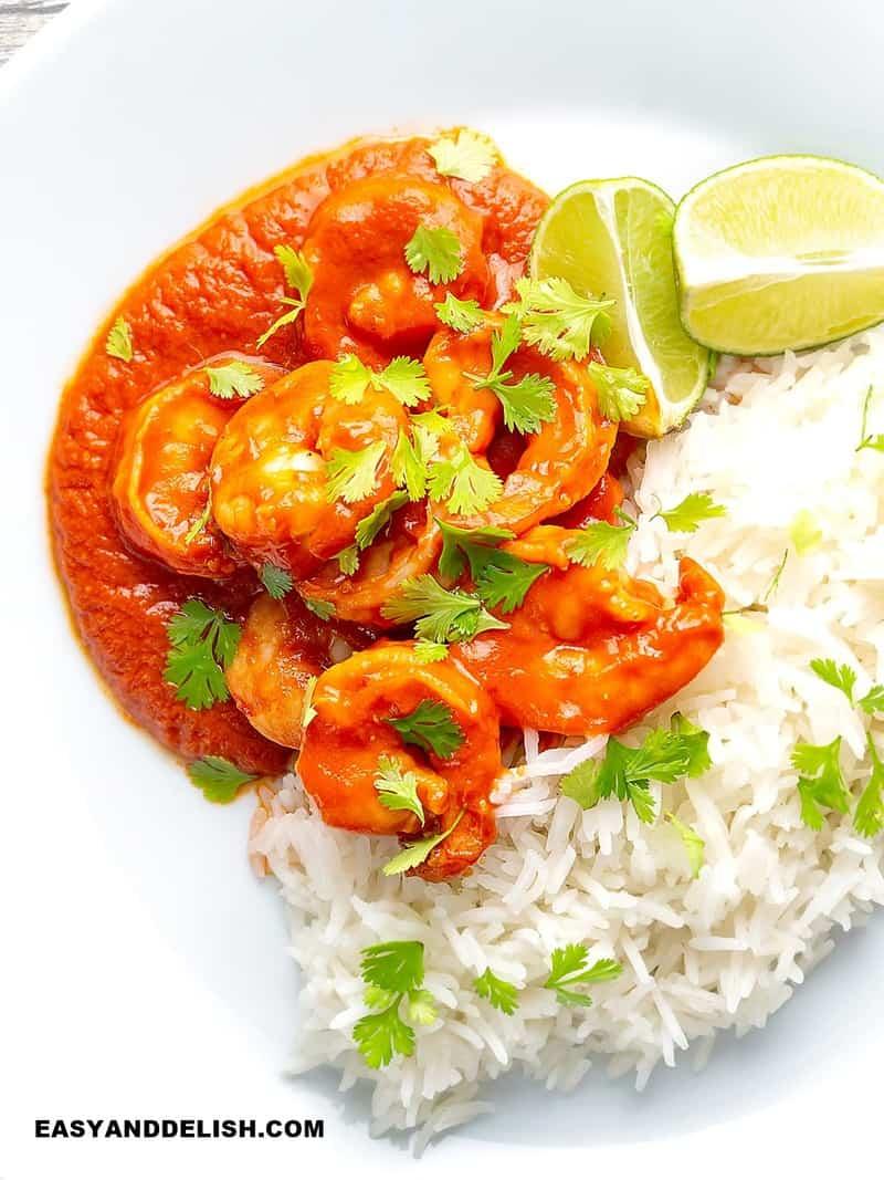 camarão no molho de tomate com arroz