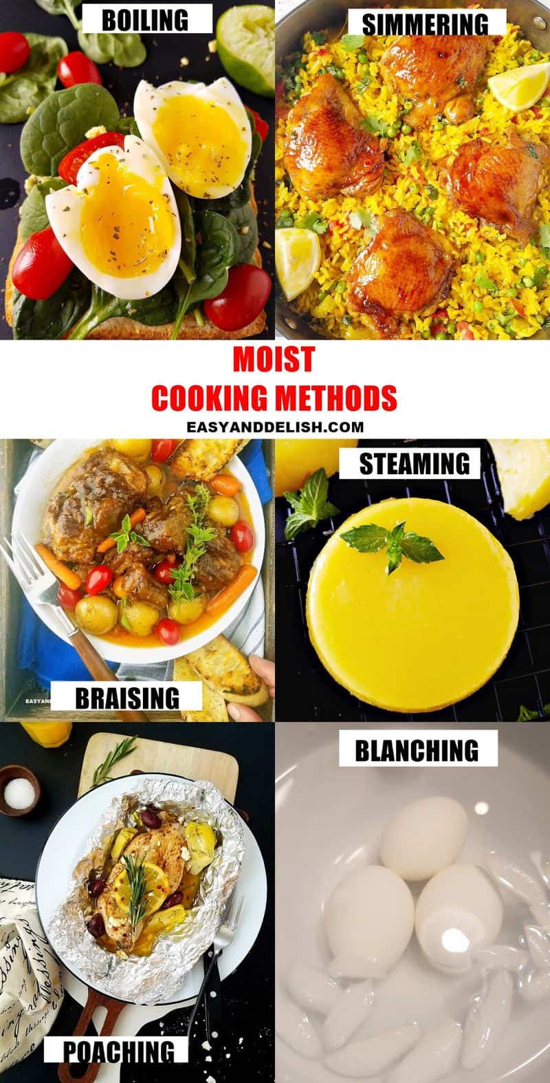 photo collage showing 6 moist heat cooking methods