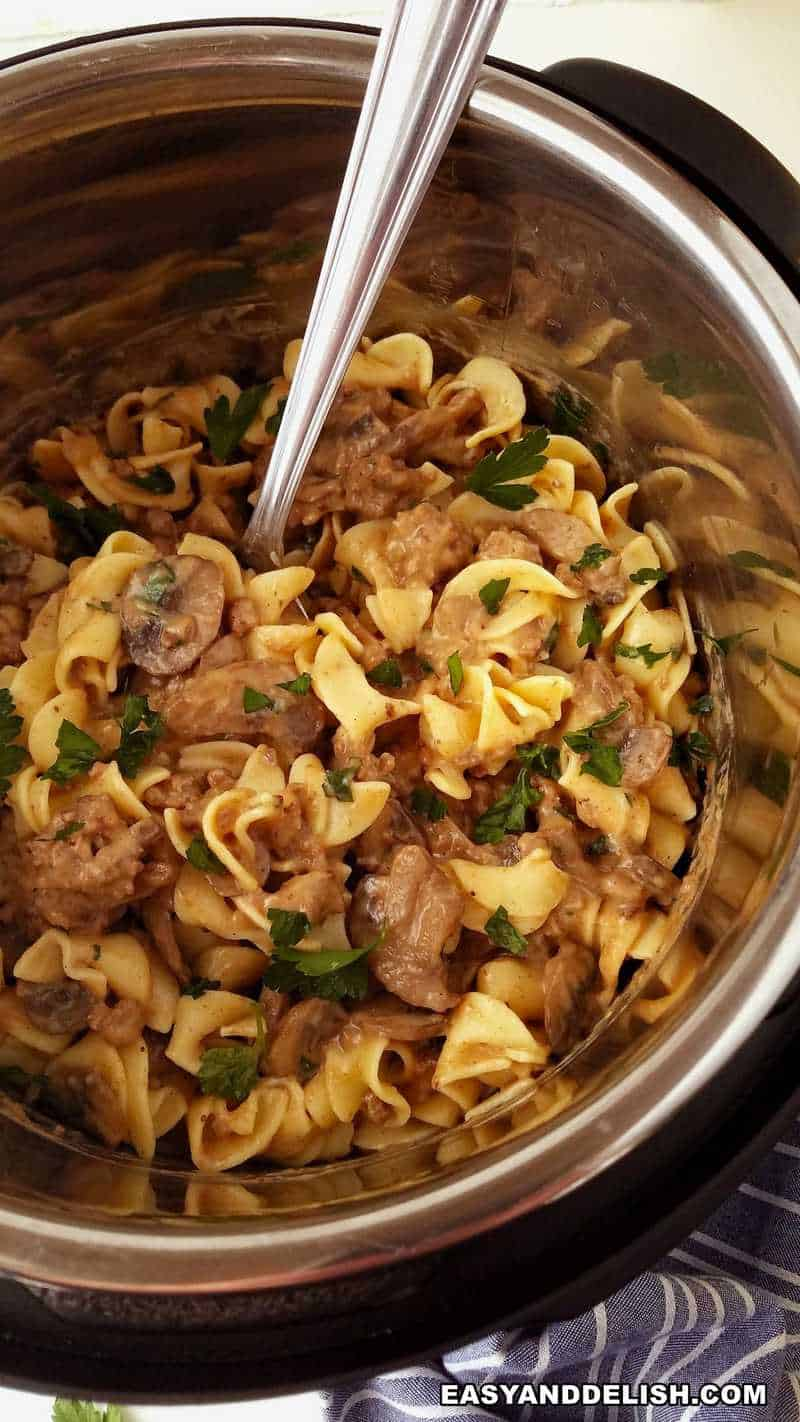 stew in the instant pot with noodles